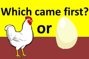 Chicken Came First or Egg?