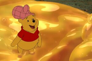 Why Winnie The Pooh Is Called a Pooh?