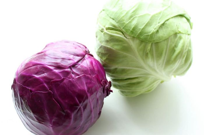 Red Cabbage VS Green Cabbage