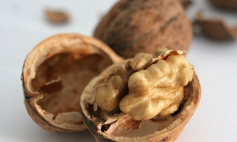 Why Walnut Is So Healthy