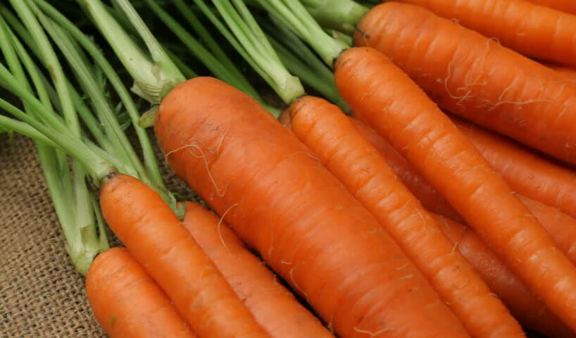 Healthy Facts About Carrots