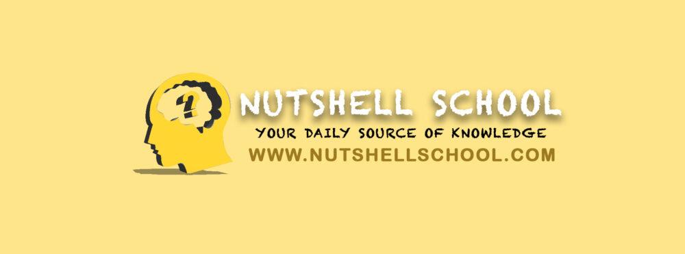 nutshellschool
